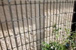 Stainless Steel Cable Trellis System 2000-60